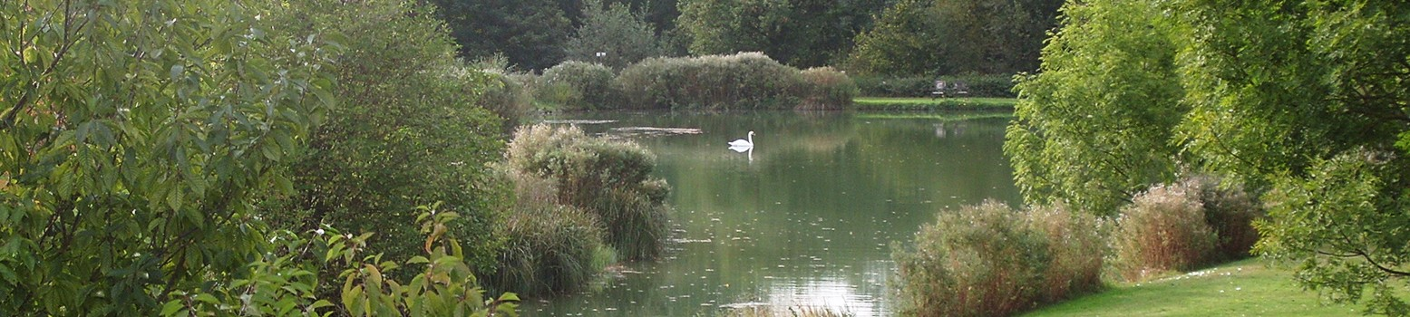 Bellows Mill Self Catering Accommodation - Lake